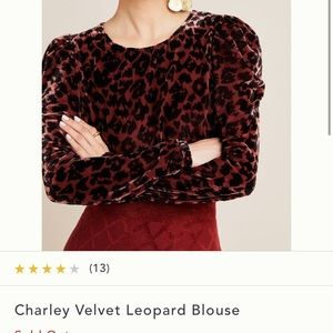 Beautiful leopard Blouse from Anthropologie